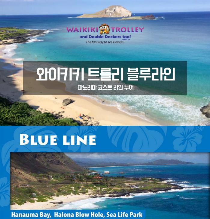 와이키키 트롤리 블루라인 해안선 관광 투어